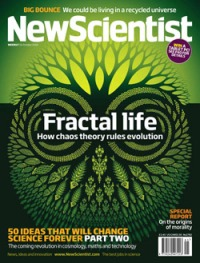 Fractal New Scientist Magazine. Yehrin Tong