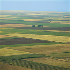 tierra_de_campos