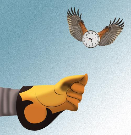 Guante de cetrería con reloj volador